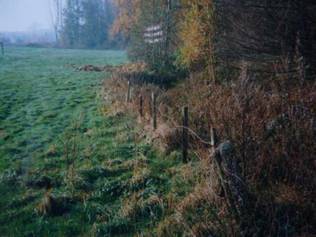 1991 wuchs die Idee, den historischen Rodebach auf seinem Weg von der Brommler Mühle Richtung Etrzenrather Mühle wieder freizulegen, zu renaturieren