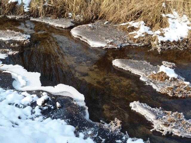 Winterimpression kurz vor der N274