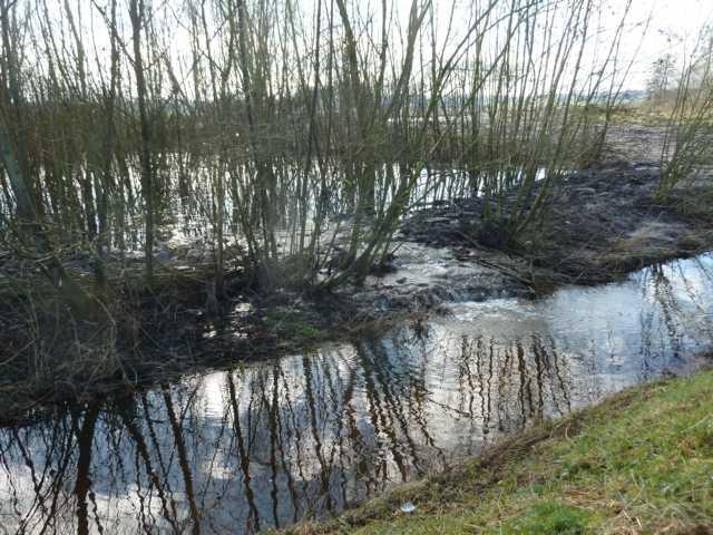 Rode Beek : bei Hochwasser schlägt er ab in den parallel verlaufebndebn REodebach