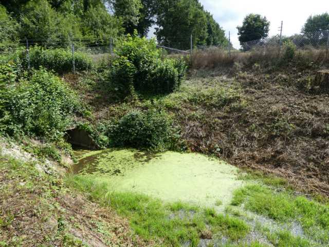 nördlich von Etzenrade, Richtung Bingelrade, sind vor Jahren schon mehrere sog. buffer (Regnauffangbecken) angelegt worden, die bei Strajregen die ungeheuren Wassermengen aus der permanent ansteigenden Feldflur auffangen