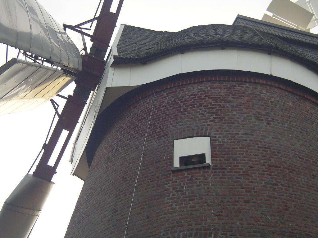 """Auch optisch bestens angepasst: Turmfalkenkasten an der Windmühle in Breberen. Besonderer Dank an den """"Müller"""" K.H. Tholen für seine äußerst kooperative und produktive Zusammenarbeit!"""