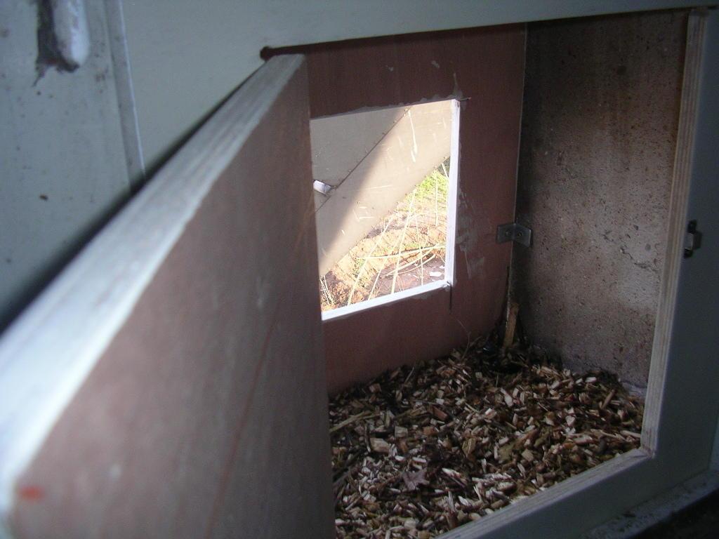 """Die besondere Idee: Die Fensternische ist gleichzeitig """"Brutraum""""! Damit der Mühleninnenraum nicht verkotet werden kann, ist dieser Raum nach außen und innen abgedichtet, auf der Rückfront ein """"Kontrollfenster"""" der Boden mit Häckselmaterial ausgelegt."""