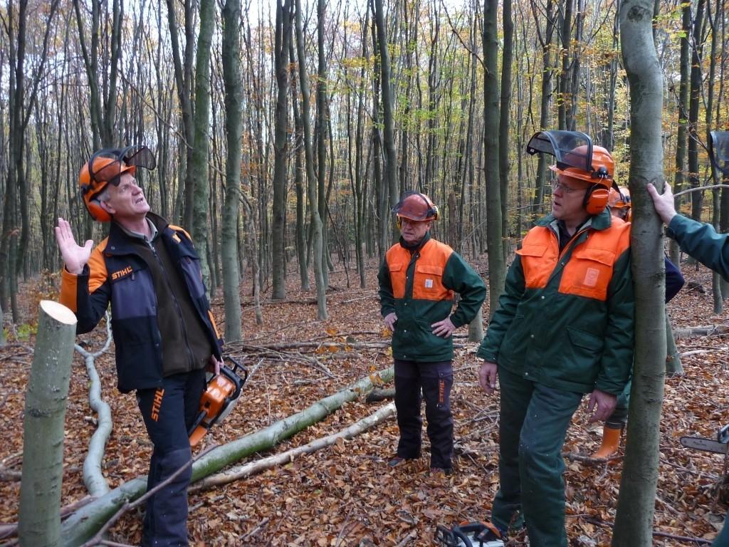 """""""Baumbeurteilung und Baumansprache"""": Gefahrenbereich = doppelte Baumlänge rundum, Fallrichtung festlegen, sich für die richtige Fäll- und Schneidetechnik entscheiden ...!"""