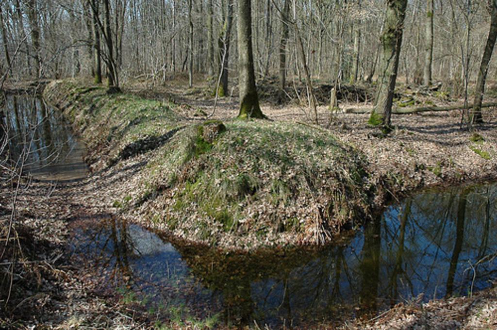 Lammedam - Süd-Ost-Ecke (Foto J.v.W.)