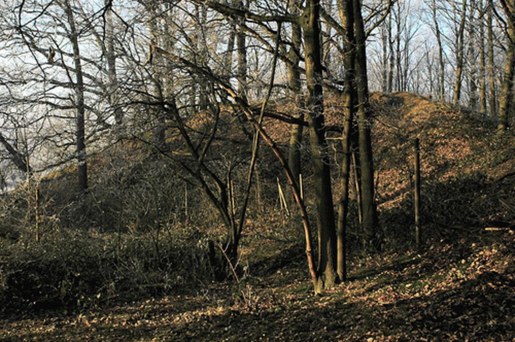 Motte an der Etzenrather Mühle in Mindeergangelt (Gulik Rampe - Grenze zwischen Brabant und Gulik/Jülich)