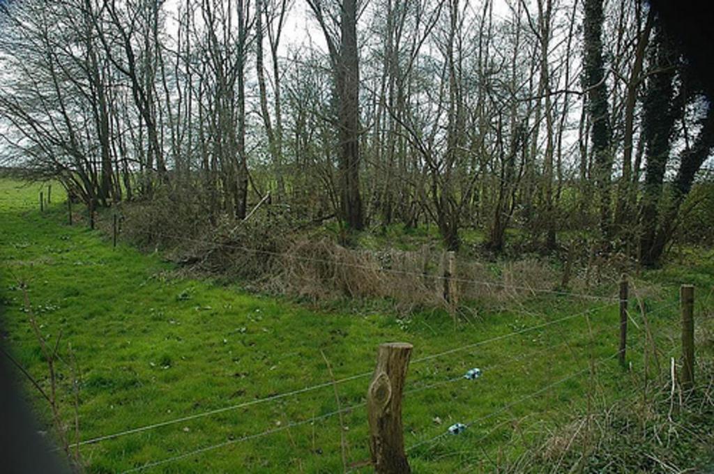 Viereckschanze in Niederbusch (Foto J.v.W.)