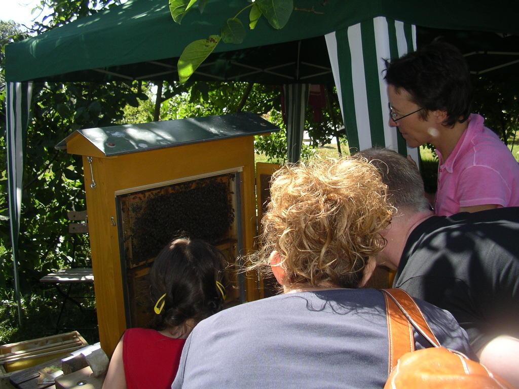 Frau Sch. lässt keine Frage an ihrem Bienenlehrstand unbeantwortrt