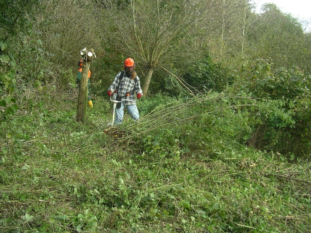 Frank - im Kampf mit Freischneider und Unterholz