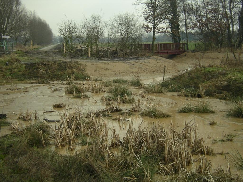 Mündungsstelle des Krümelbachs in den renaturierten Rodebach