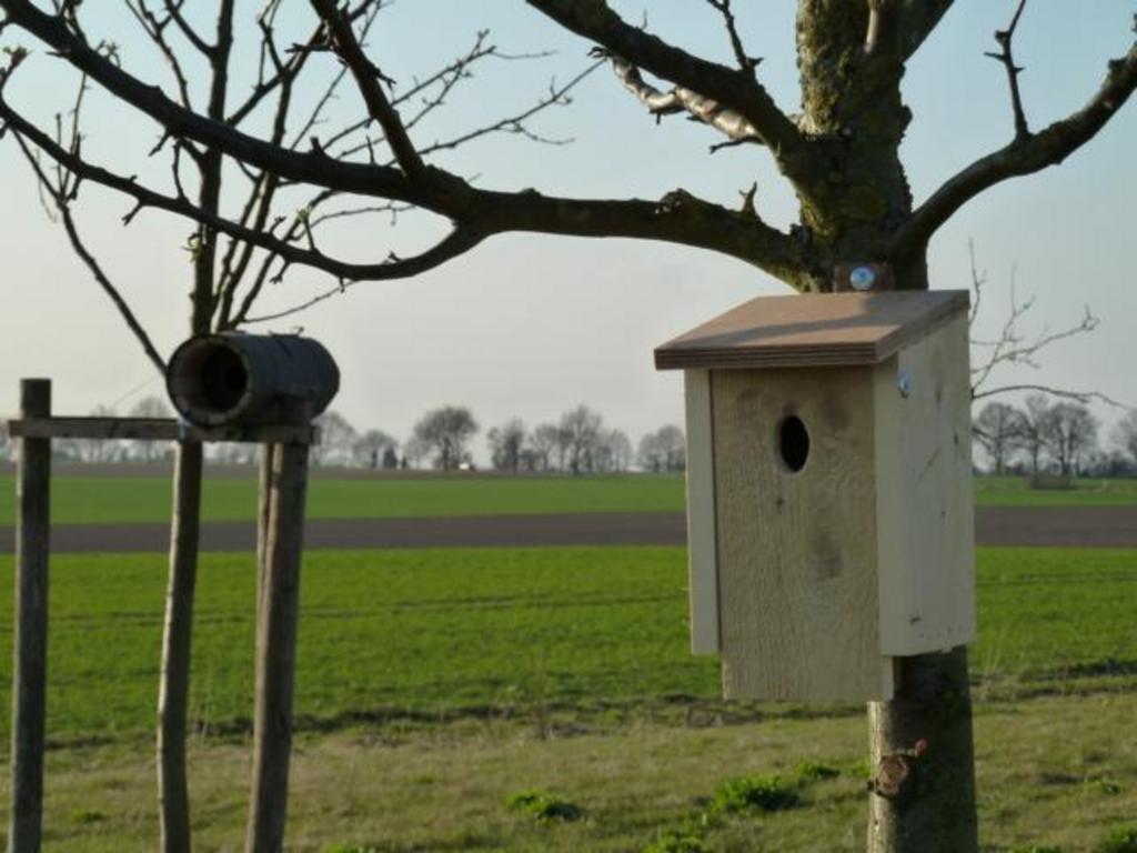 """Brut- und Nisthilfe für den Gartenrotschwanz (ovale Einflugöffnung) - """"Vogel des Jahres 2011"""""""