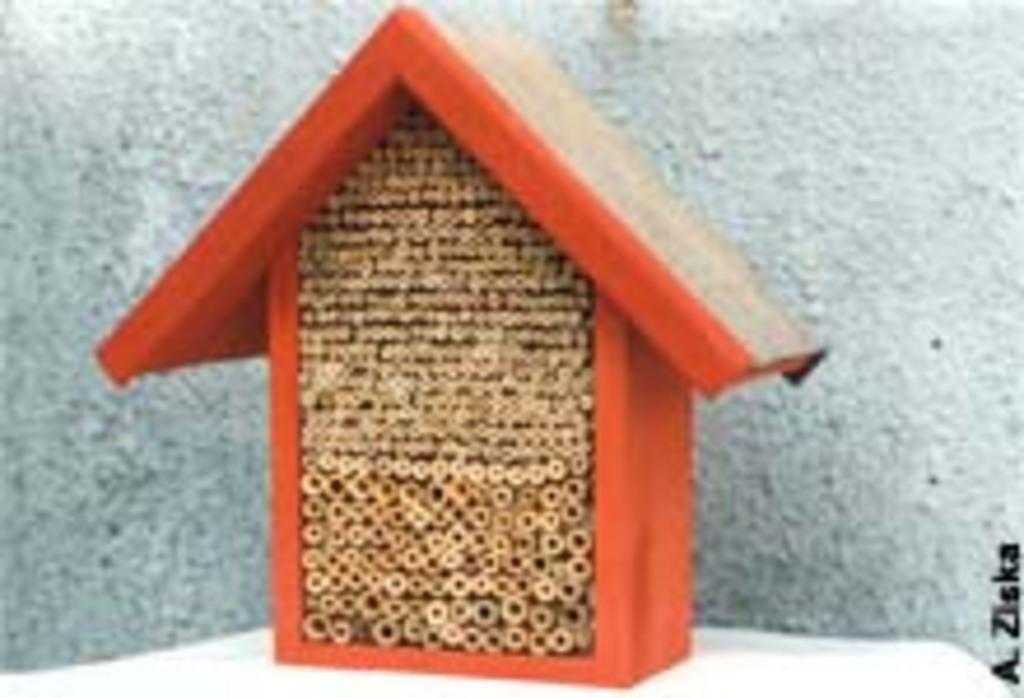 Insektenhotel 2
