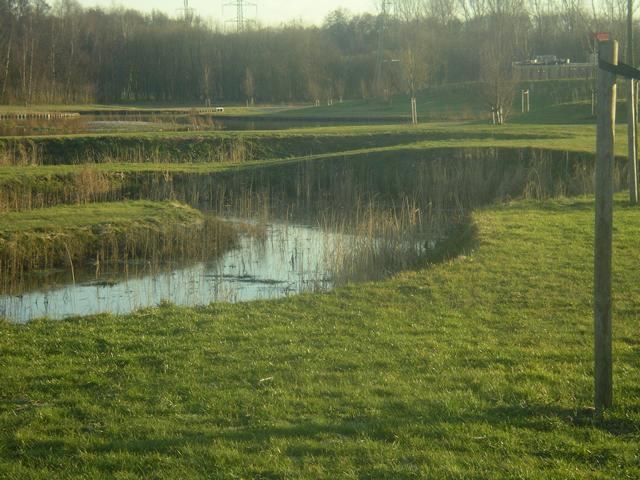 """Bei der Neuanlage des """"visvijvers"""" (ehemal. Kläranlagengelände in Schinveld / Nl) wurde eine vorbildliche Wasserklärung auf biologische Art mit eingeplant"""