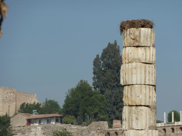 Artemistempel (Nähe Ephesus/Tr)