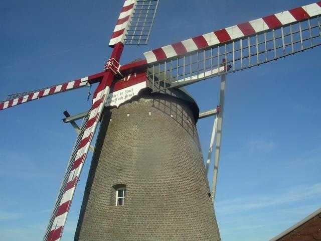 Windmühle Waldfeucht: neben einem Tufa-Kasten konnte hir eine Nisthilfe für Schleiereulen installiert werden