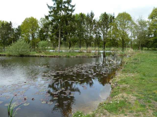 Abriss der Uferbefestigungen