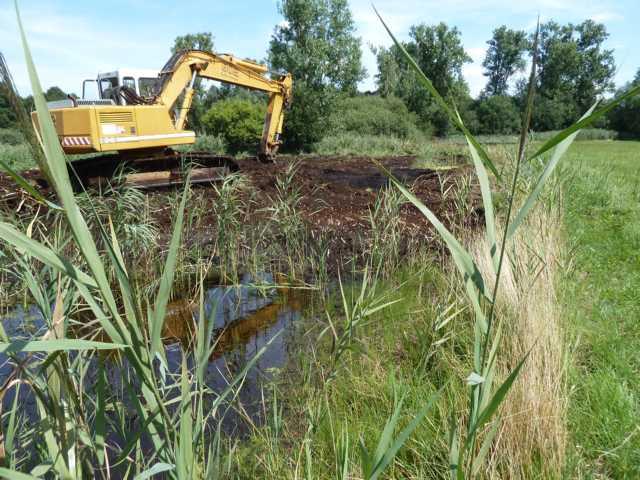 Aufgabe: aus 2 bestehenden kleinen Blänken aus 2013 sollte im grunde genommen 1 große werden, wobei die bestehenden Biotope erhalten bleiben