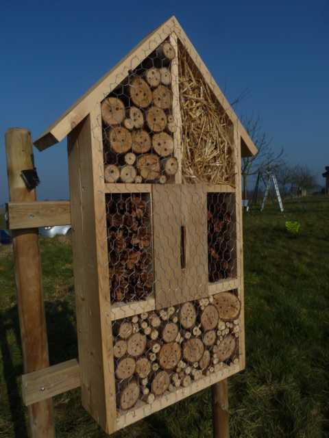 Einsiedlerbienen, sog. solitär lebende Bienen, stellen miot fast95% die größte Gruppe unserer Bioenen dar. Sioe sind Einzelgänger, bildewn also also nicht den Klassischen Staat unserer Honigbienen,