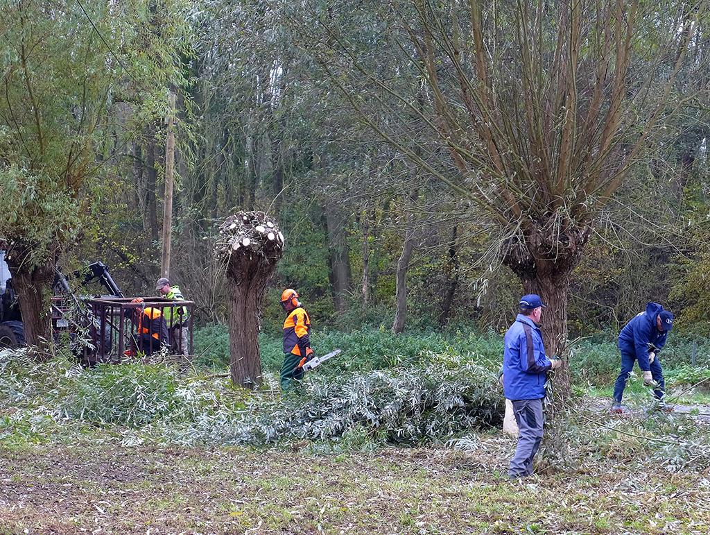 grenüberschreitend von nl. Rodebachufer aus gesehen