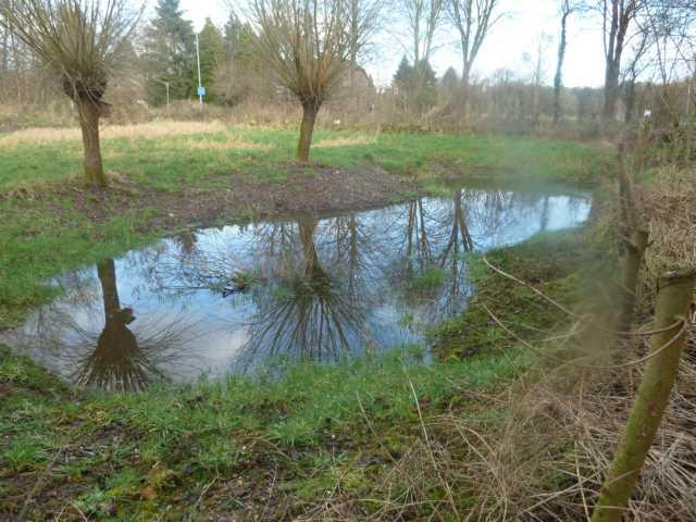 """die 1991 geplanten """"temporäre  mit Wasser bespannten Senken (zu deutsch: Mulden, die sich nur zeitweise mit Wasser füllen, wurden wieder erkennbar"""