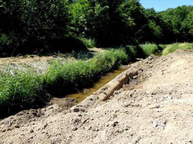 parallel dazu wurden in den vergengenen Tagen diverse Wasserbaumaßnahmen an anderen Stelle der Renatzurierungsmaßnahme zu beobachten