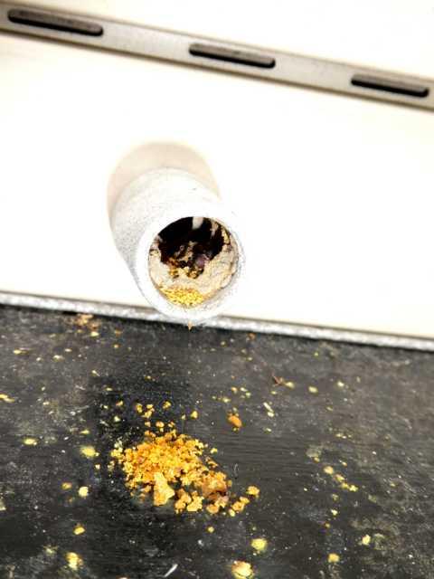 die später schlüpfende Larve kann sich dann von dem angesammelten Proviant ernähren, entwickelöt sich dann weiter zur ausgewachsenen Biene.