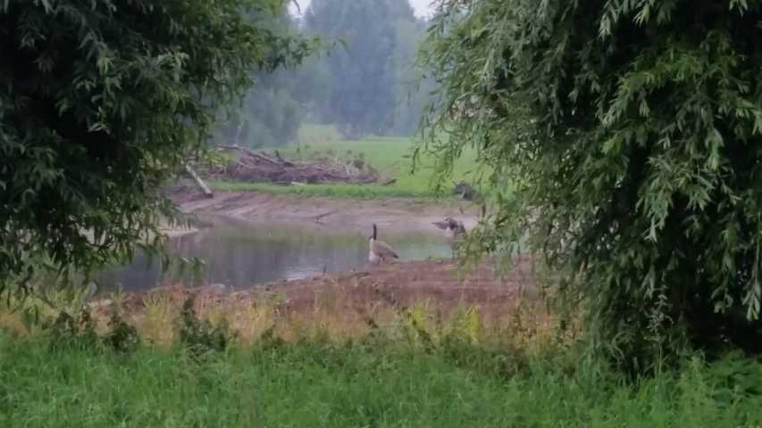 """den neuen """"moerasloop bestrzen  (hier Moerasloop von Etzenrade kommend Richtung Etzenrather Mühle (Fot Antonioo B.)"""