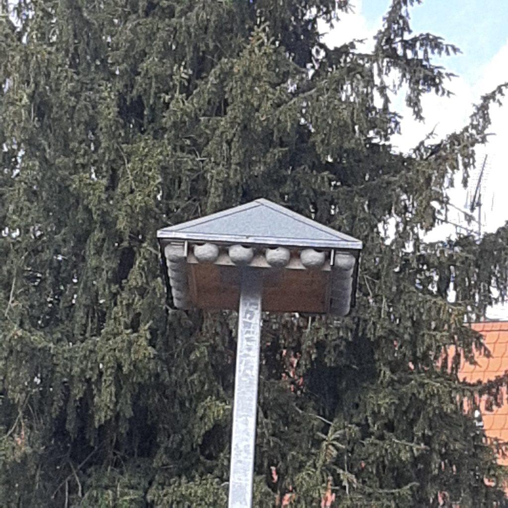 schwalbenhotel-2